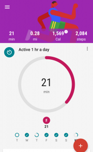 Google Fit Screenshot